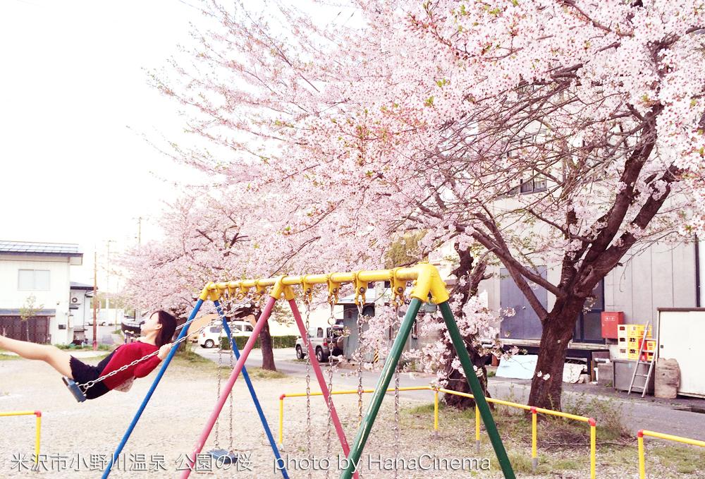 小野川温泉の公園の桜