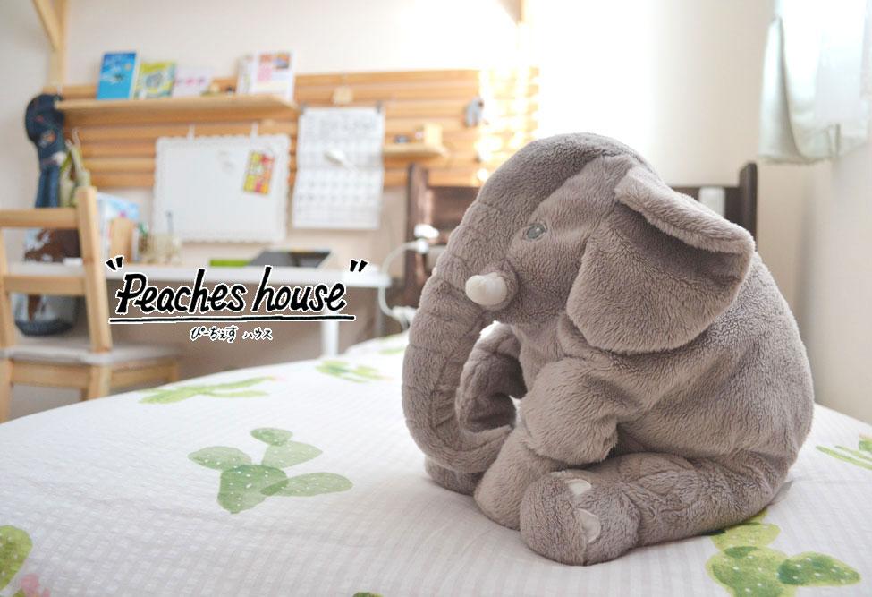 米沢女子短期大学生向けのシェアハウス